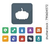 food icons. vector collection...   Shutterstock .eps vector #790604572