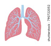 lungs symbol. breathing. lunge... | Shutterstock .eps vector #790722052
