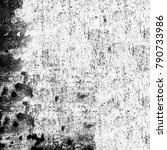 grunge texture black and white. ... | Shutterstock . vector #790733986
