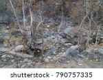 Exposed Garbage In Landscape...