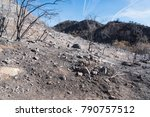Landscape Damaged By The Thomas ...