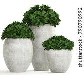 3d illustration of plants in... | Shutterstock . vector #790790992
