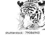 Tiger Head Vector Eps 10 Of...