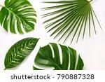 Creative Tropical Fresh Palm...