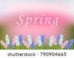 spring vector blurred... | Shutterstock .eps vector #790904665