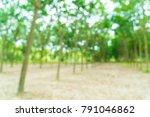 abstract blur walkway with tree ... | Shutterstock . vector #791046862