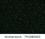 seamless curly background... | Shutterstock .eps vector #791080402
