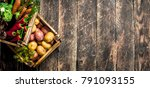 organic food. harvest of fresh... | Shutterstock . vector #791093155