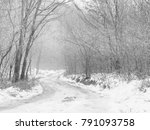 black and white forest in... | Shutterstock . vector #791093758