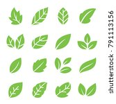 leaves icon set. collection of... | Shutterstock .eps vector #791113156