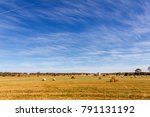 dry grass field with round bay... | Shutterstock . vector #791131192