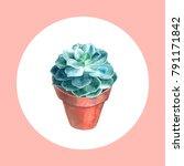 watercolor succulent. hand... | Shutterstock . vector #791171842