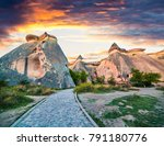 fantastic fungous forms of... | Shutterstock . vector #791180776