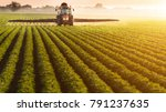 tractor spraying pesticides on... | Shutterstock . vector #791237635