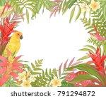 tropical decoration frame for... | Shutterstock .eps vector #791294872