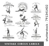 set of vintage circus labels.... | Shutterstock .eps vector #791341402