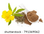 Small photo of Damiana flower and damiana dried leaves and powder isolated on white background from above. Flat lay.
