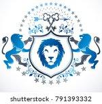 old style heraldry  heraldic... | Shutterstock .eps vector #791393332