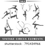 set of elements of the circus... | Shutterstock .eps vector #791434966