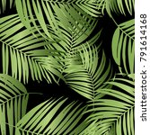 vector green palm tree pattern... | Shutterstock .eps vector #791614168