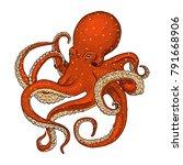 sea creature octopus. engraved... | Shutterstock .eps vector #791668906