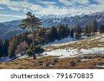 alpine winter scenery with...   Shutterstock . vector #791670835