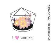 i love succulents. vector set... | Shutterstock .eps vector #791709682