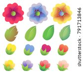 colored flower collection | Shutterstock .eps vector #791713846