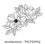 peony flower black and white | Shutterstock .eps vector #791752942