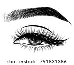 hand drawn woman's sexy... | Shutterstock .eps vector #791831386