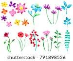set of watercolor flowers... | Shutterstock . vector #791898526