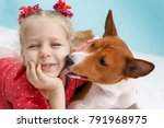 Stock photo little blonde curly girl hugging a red basenji dog a dog licks a girl s cheek 791968975