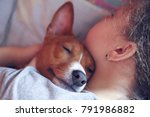 the girl hugs the basenji dog ... | Shutterstock . vector #791986882