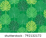 colorful tropical leaves  of... | Shutterstock .eps vector #792132172