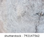 abstract close up bright wood... | Shutterstock . vector #792147562