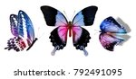 Stock photo set with butterflies isolated on white 792491095