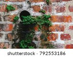vegetation on a brick wall. the ... | Shutterstock . vector #792553186