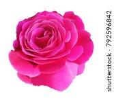 romance valentine pink rose... | Shutterstock . vector #792596842