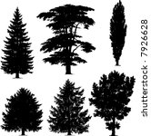 collection of pine trees | Shutterstock .eps vector #7926628