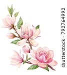 watercolor illustration of a... | Shutterstock . vector #792764992