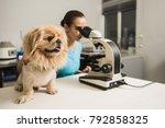 female vet with microscope | Shutterstock . vector #792858325