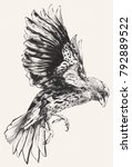 finch darwin flying jumping... | Shutterstock . vector #792889522