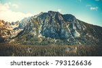 the magnificent strong and... | Shutterstock . vector #793126636