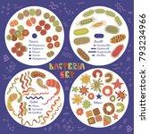various infection bacteria...   Shutterstock .eps vector #793234966