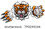 a tiger angry animal sports... | Shutterstock . vector #793244146