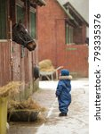 Small photo of A little boy wearing a blue romper walking by the stable and looking to the Horse