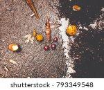 chestnuts on wet asphalt | Shutterstock . vector #793349548
