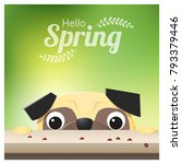 hello spring season background... | Shutterstock .eps vector #793379446