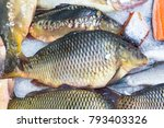 Small photo of Fresh serranidae and cyprinus or typical carps on ice at the city market