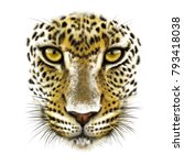 Portrait Of A Leopard On A...